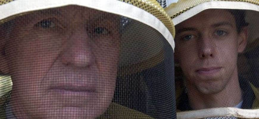 10 Phases of a new beekeeper